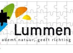 Puzzel logo gemeente